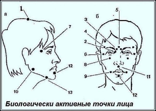 Биологически активные точки лица