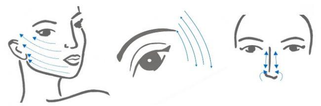 Массажные линии и направления