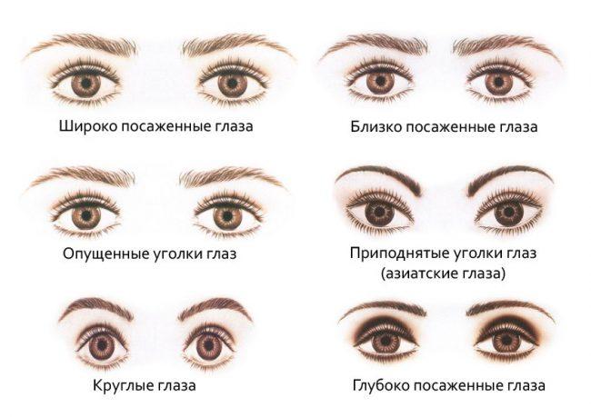 Различное расположение глаз